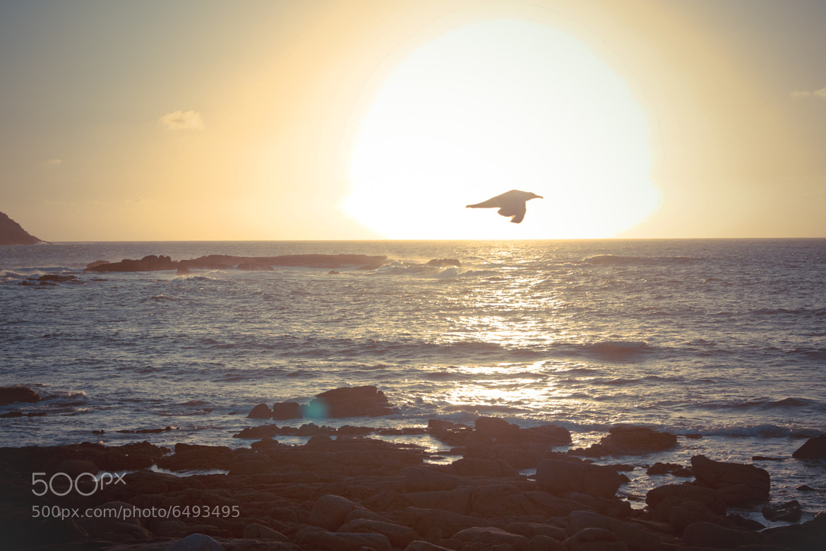 Photograph Sunset at the coast by Gema Fernández on 500px