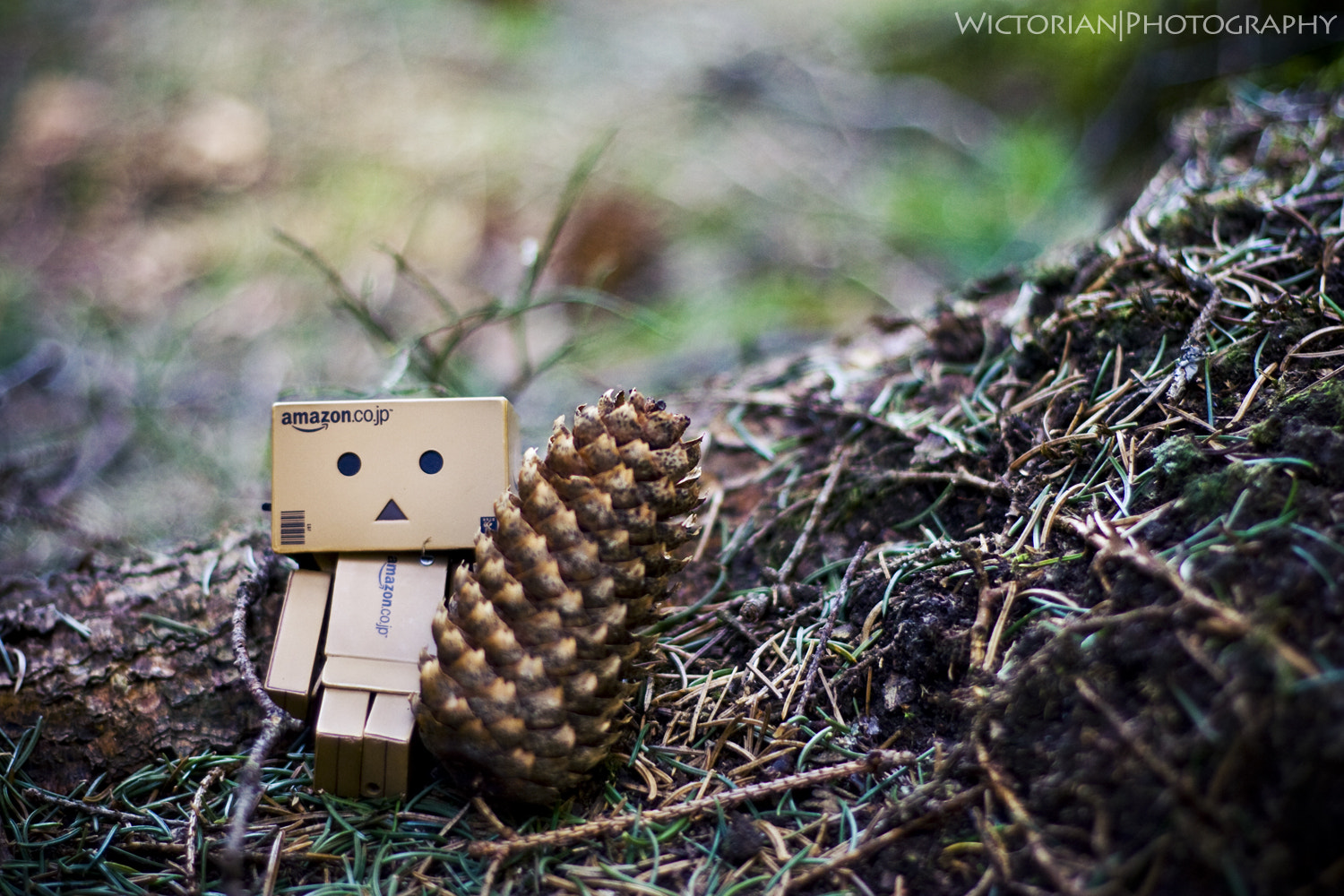 Photograph Danbo-san by Wictoria Nordgaard on 500px