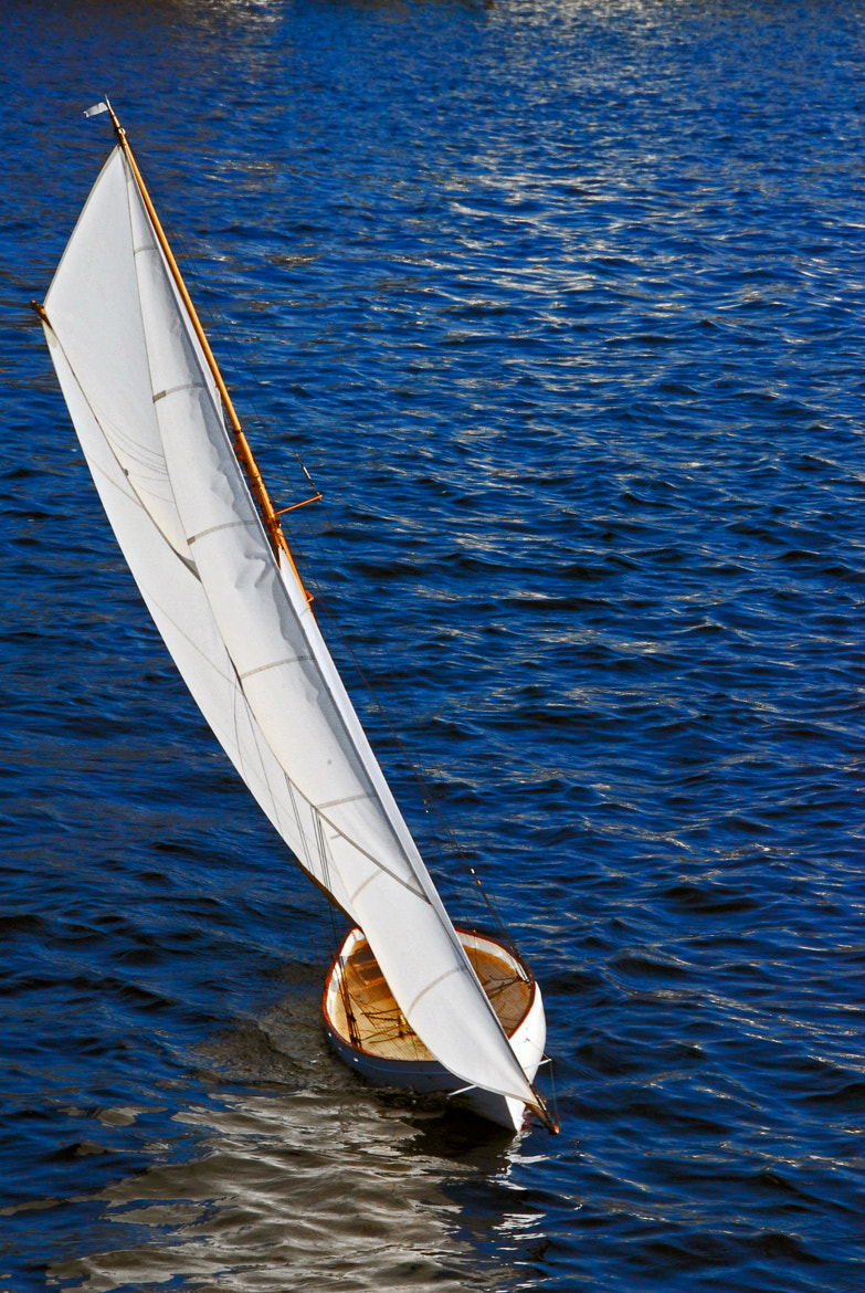 Photograph Sail Away by Christopher Ryan on 500px