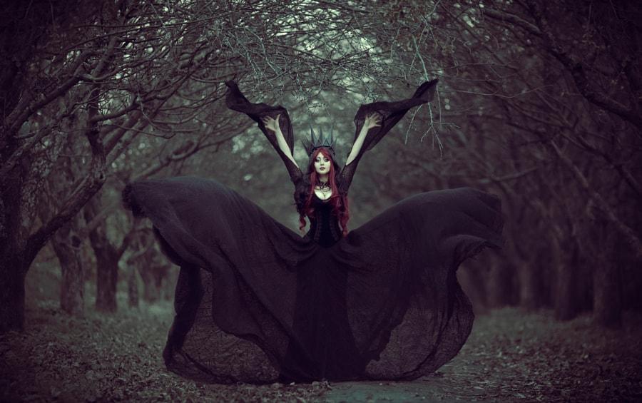 black queen de Maryna Khomenko sur500px.com