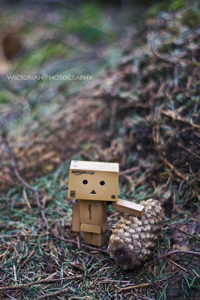 Photograph Danbo-san with a cone by Wictoria Nordgaard on 500px