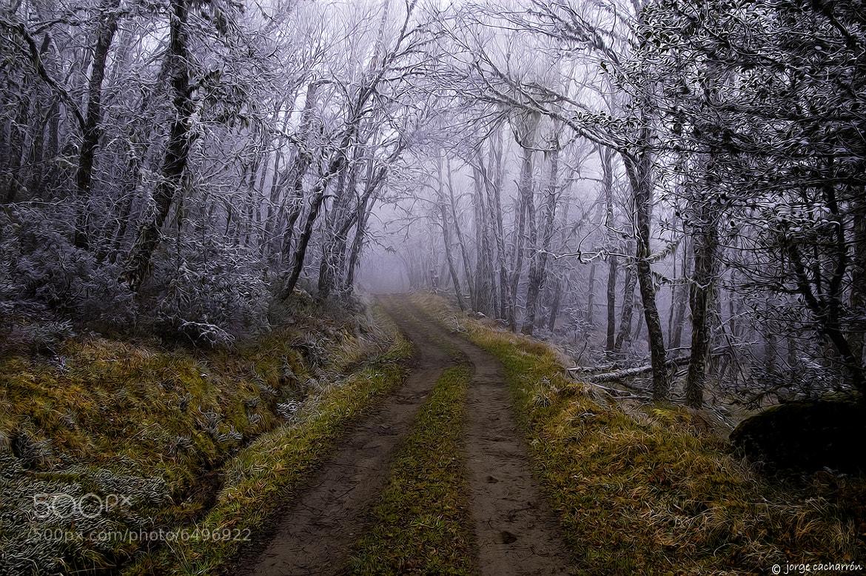 Photograph Caminos a ninguna parte (V) by Jorge Cacharrón on 500px