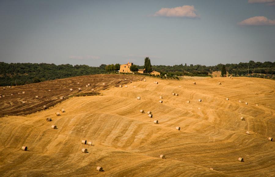 Idyllic Tuscan Landscape, Italy
