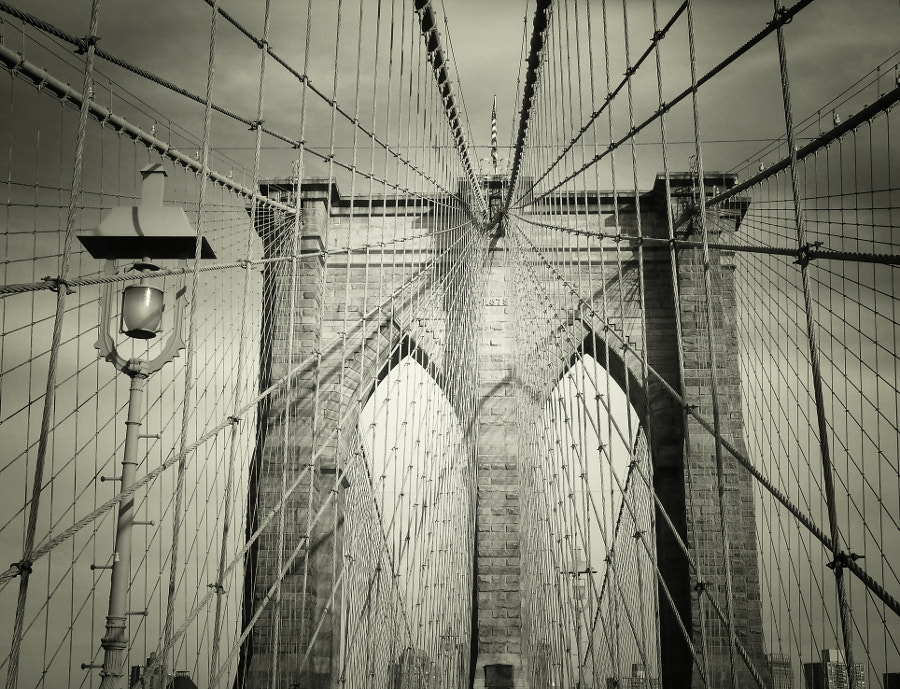 Photograph The Brooklyn Bridge's Arch and Cables by Vivienne Gucwa on 500px