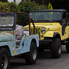 Two classic Willeys Jeeps in Summerland, California.