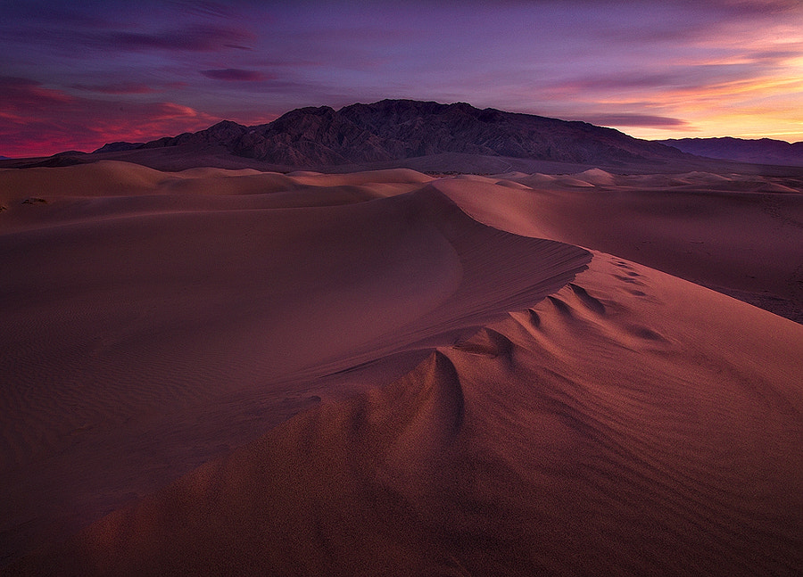 Dune Wonderland by Nagesh Mahadev on 500px.com