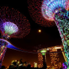 Постер, плакат: Gardens by the Bay