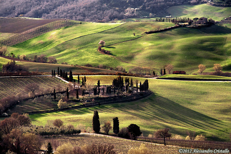 Photograph long shadows by Alessandro Cristallo on 500px