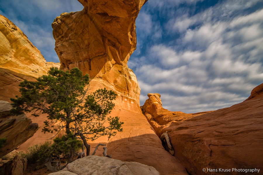 This photo was shot in the Arches National Park in Utah during my March 2014 trip.