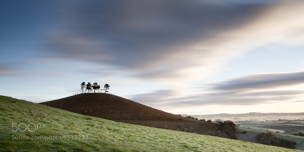 Photograph colmers hill 2 by Terry Gibbins on 500px