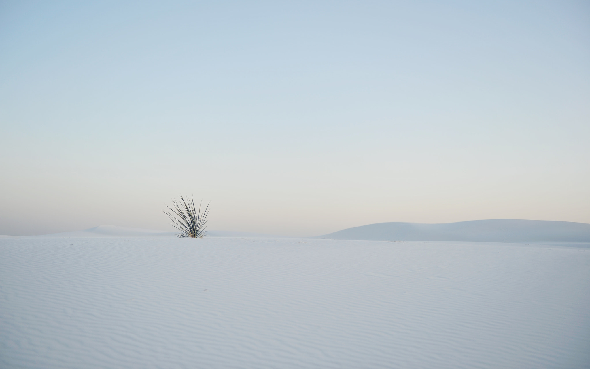 Photograph White Sands by Frank McKenna on 500px