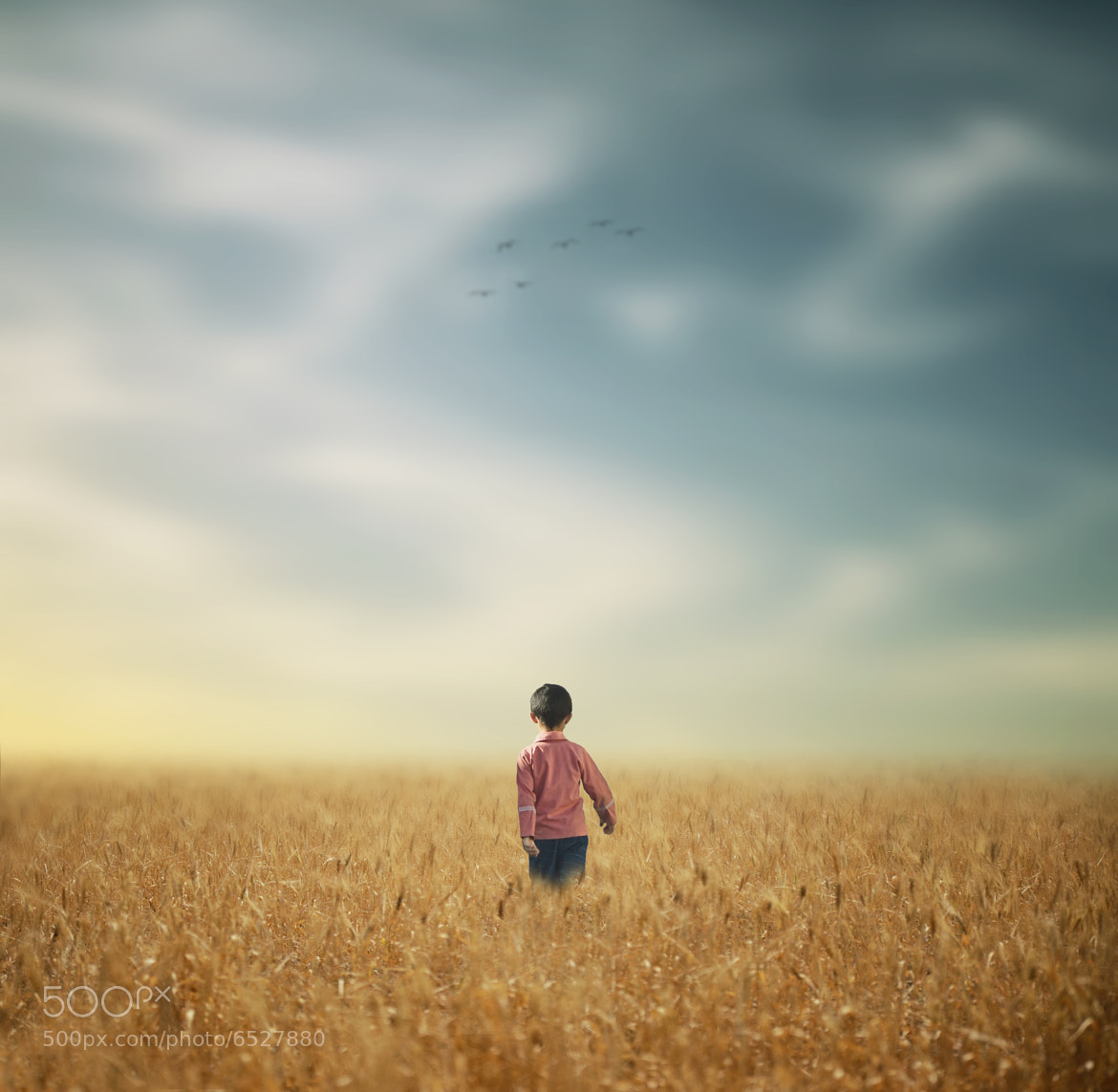 Photograph Student,s Life by Hossein Zare on 500px