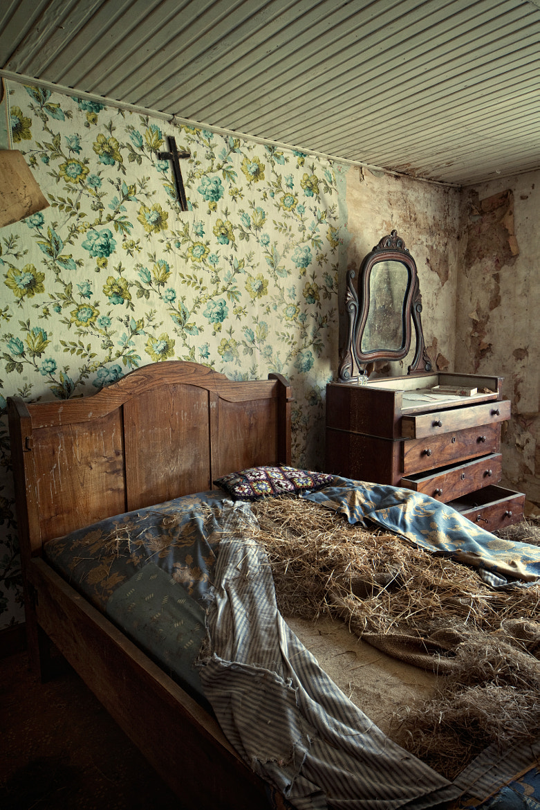 Photograph tree mansion bedroom by Andreas S on 500px