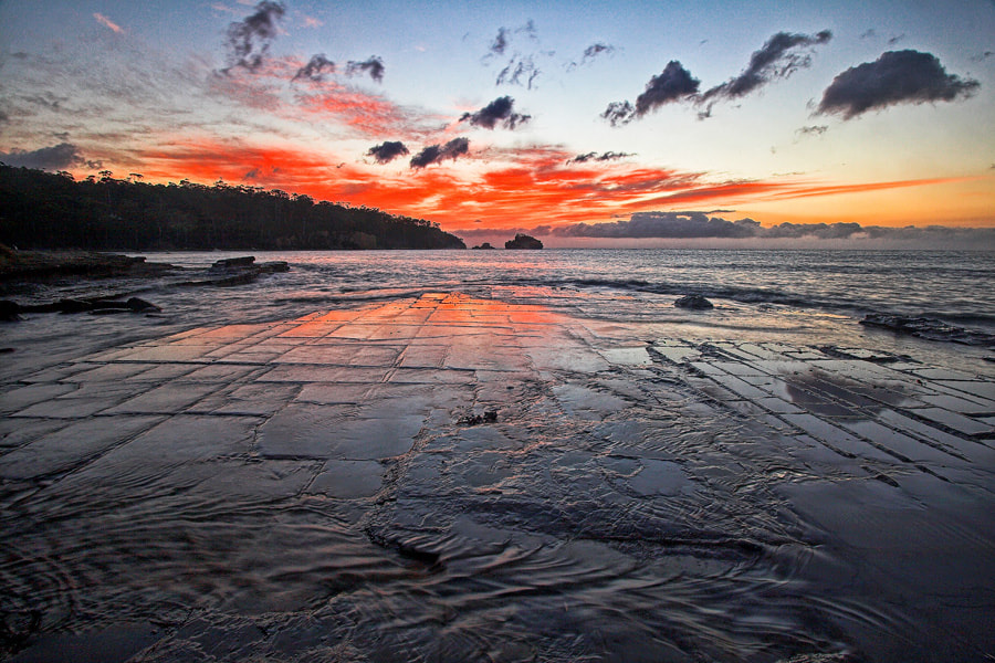 Photograph Tessellated Pavement by Peter Daalder on 500px