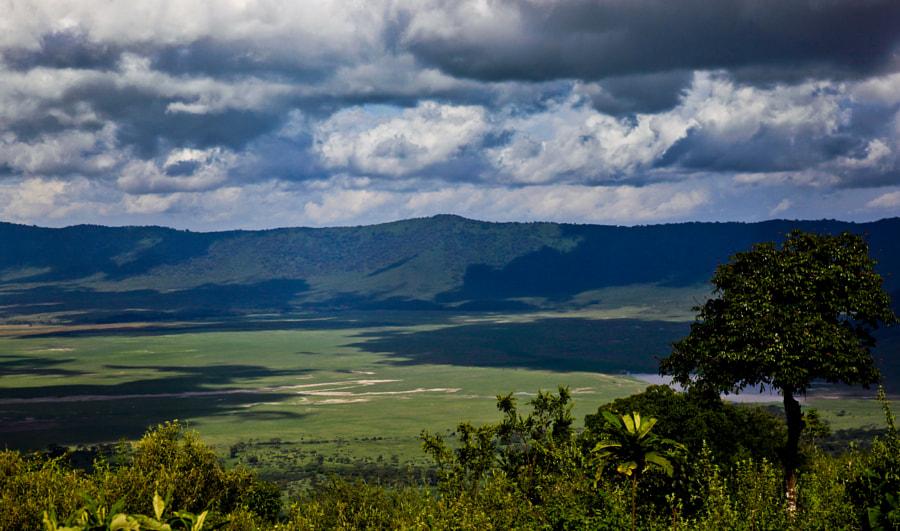 Ngorongoro crater II