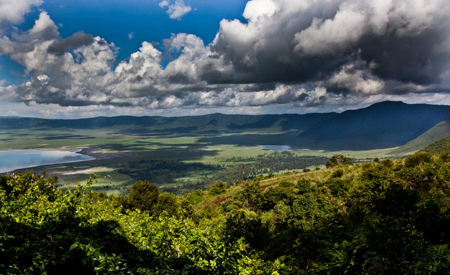 Ngorongoro crater III