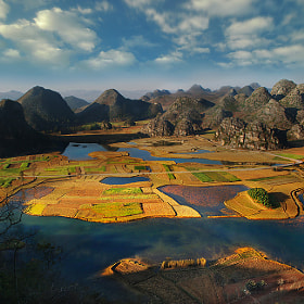 Paddy fields  by Weerapong Chaipuck on 500px.com
