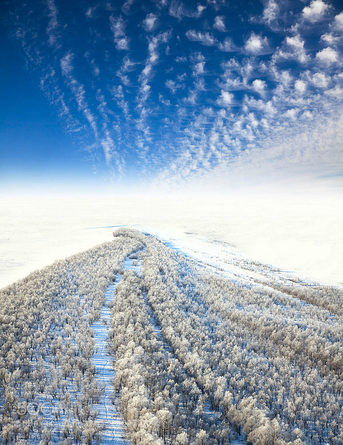 Photograph Frosty landscape, the top view by Vladimir Melnikov on 500px
