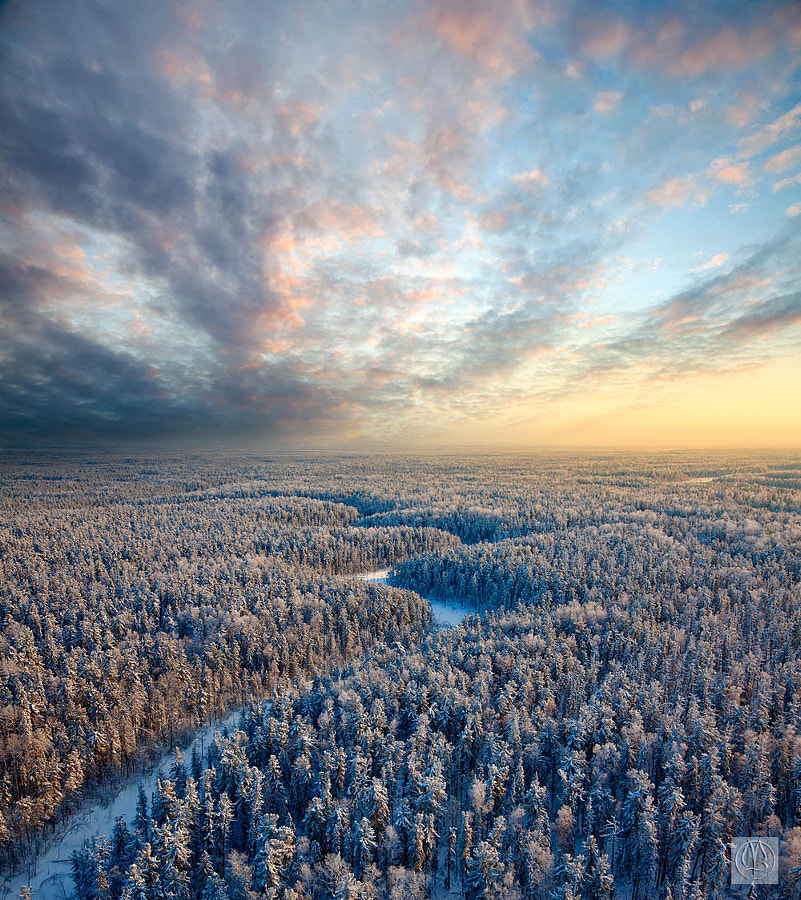 Top view of winter forest by Vladimir Melnikov on 500px.com