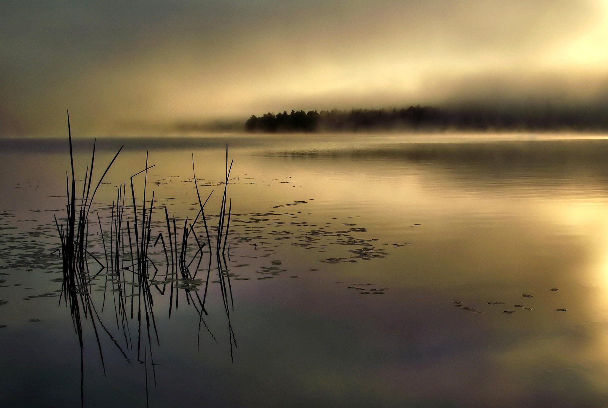 Photograph brass morning by Andrzej Pradzynski on 500px