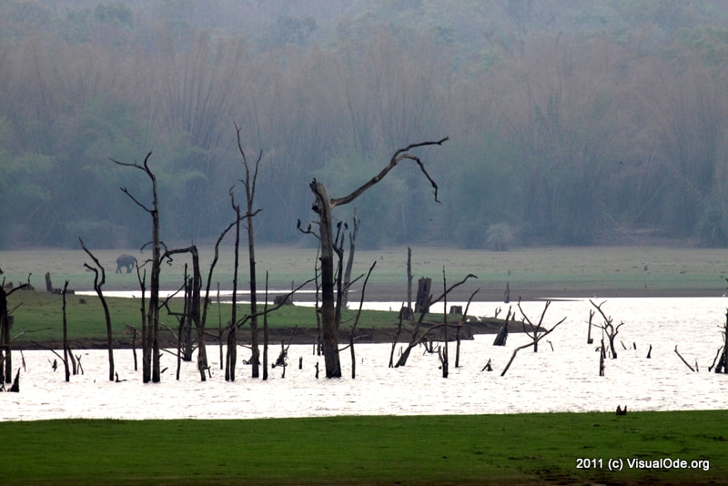 Photograph Kabini by Sudhakar Sadasivuni on 500px