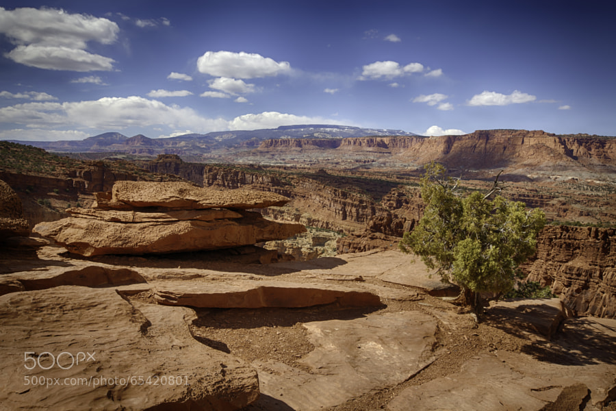 Photograph Capitol Reef by Steve Miller on 500px