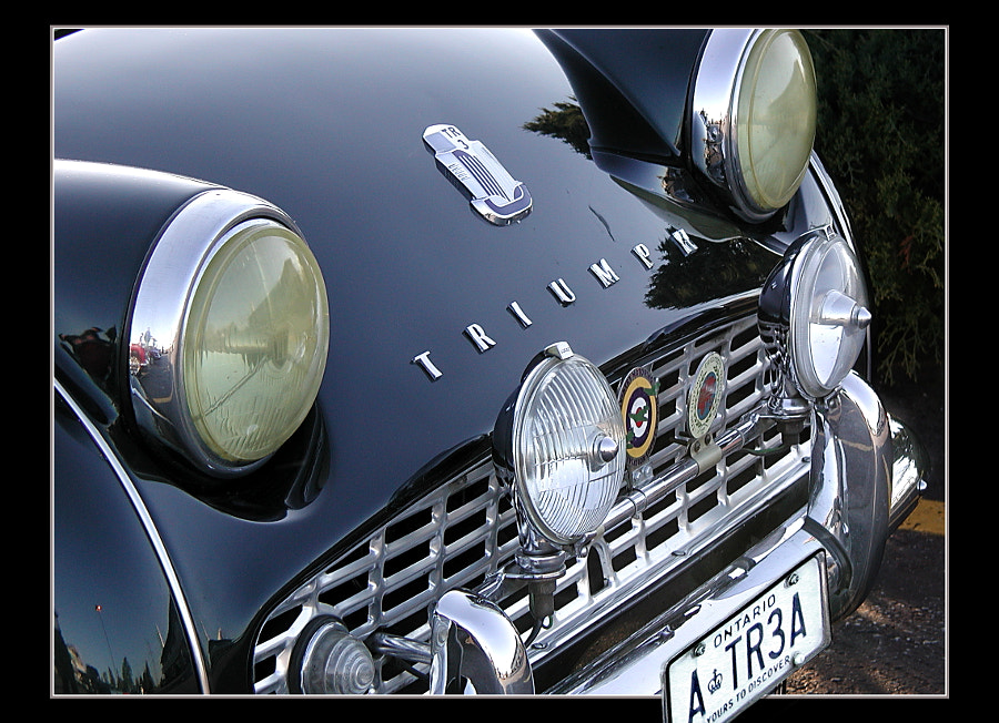 Triumph TR3A Vignette
