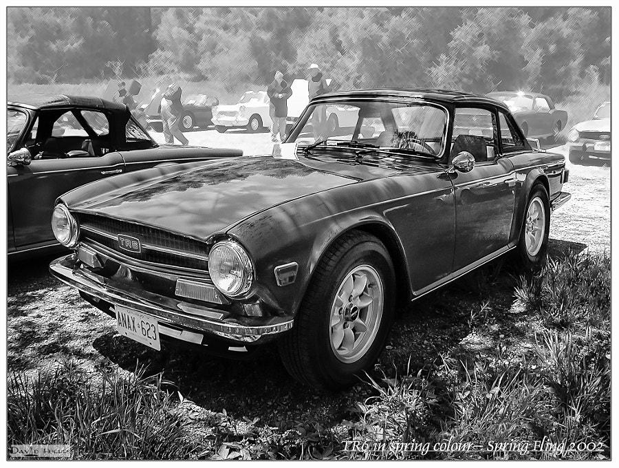 Triumph TR6 b/w