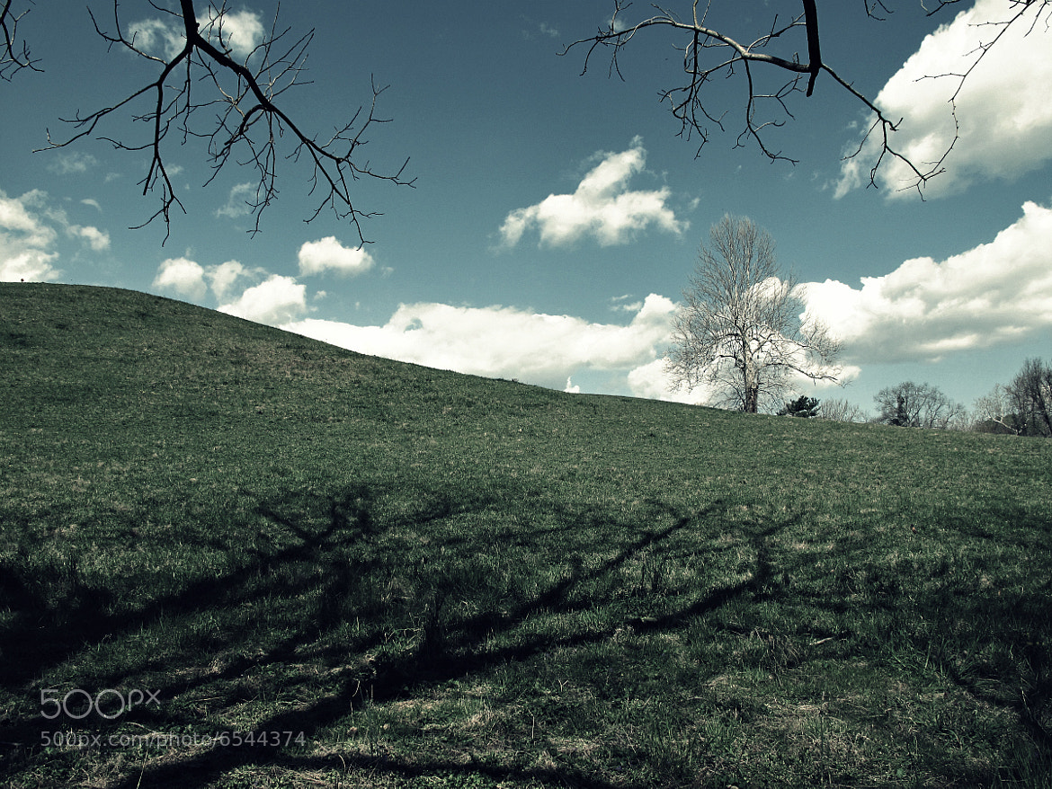 Photograph The Hill by JC Shamrock on 500px