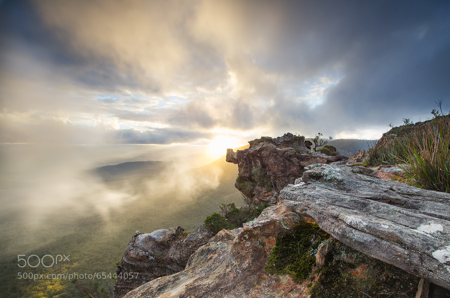 Photograph boars head by Jake Anderson on 500px