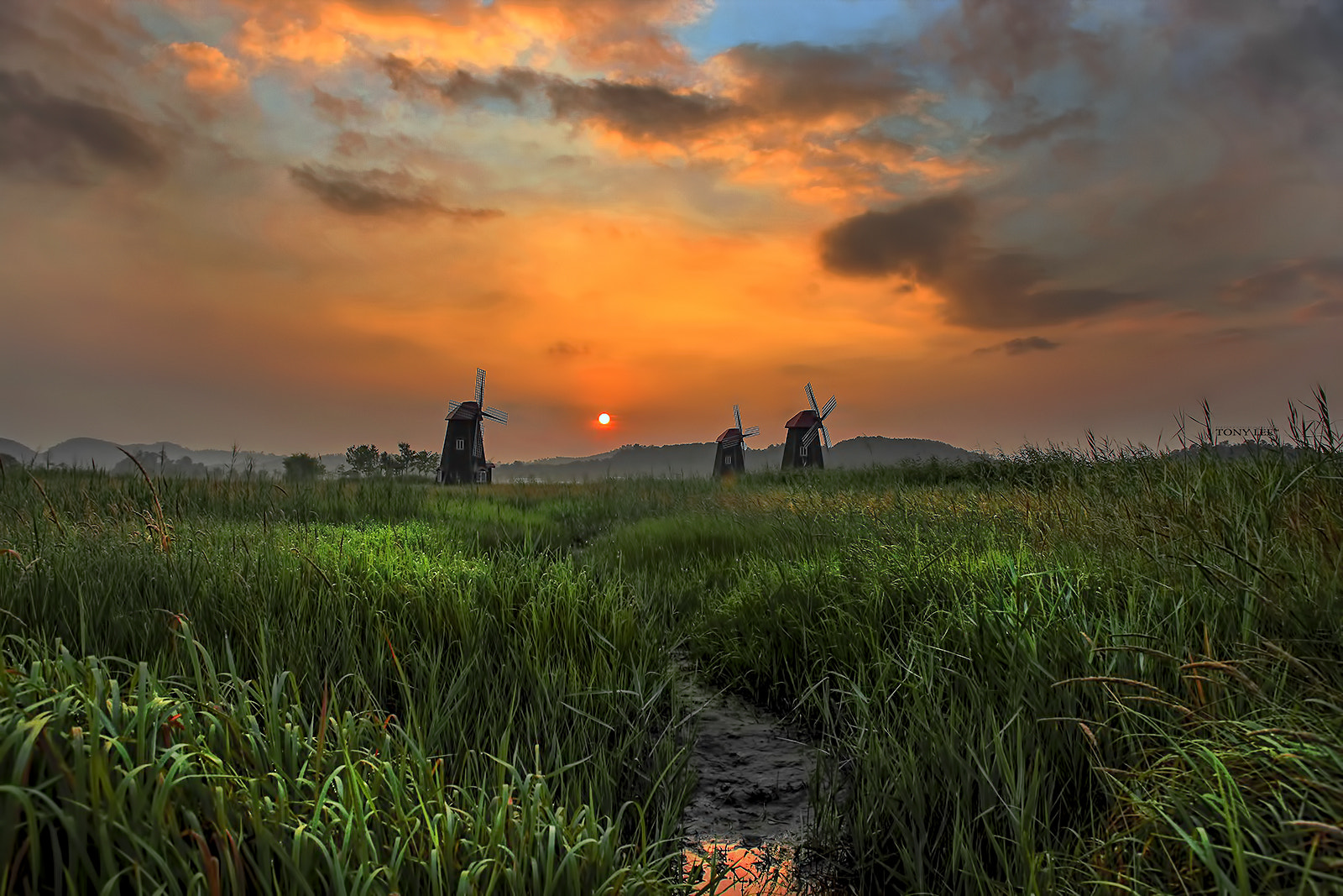 Photograph Moist Morning by Tony Lee on 500px