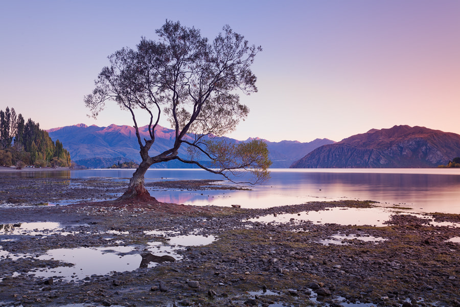 Photograph Wanaka Morning by Benjeev Rendhava on 500px