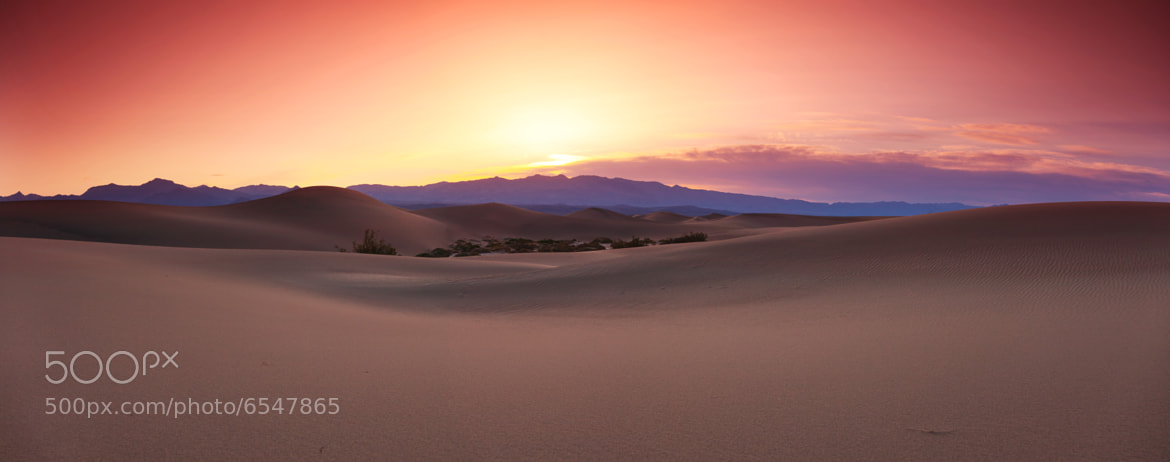 Photograph Desert Panoramic Sunrise by Eric Whipp on 500px