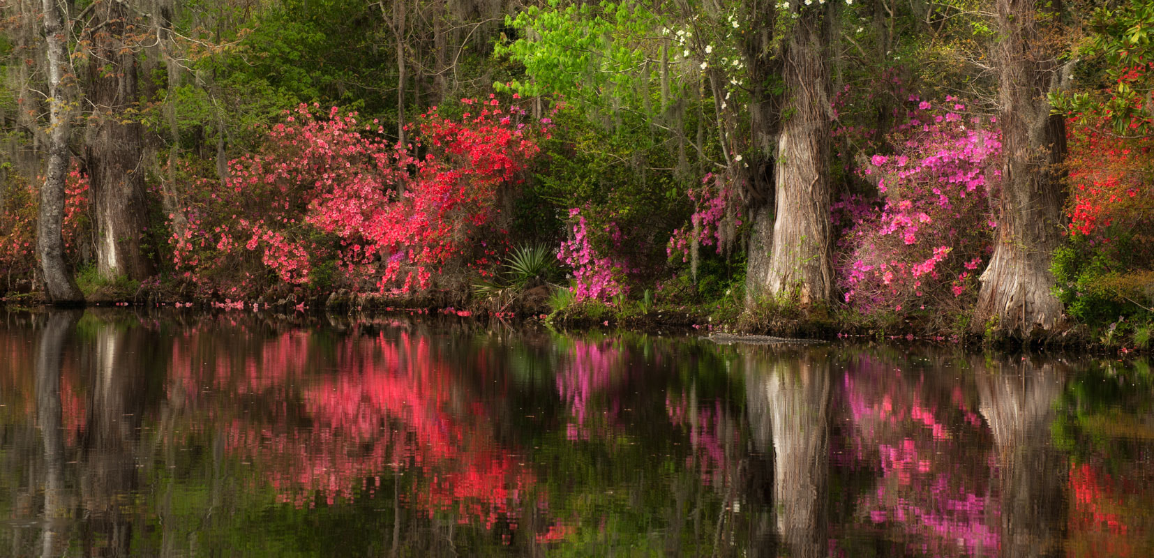 Photograph Lowcountry Reflections by Donna Eaton on 500px