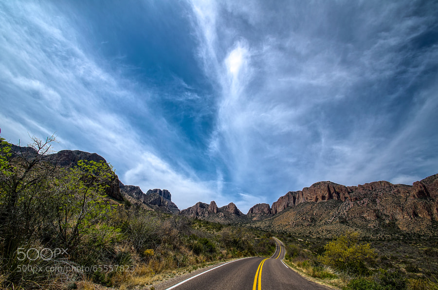 Photograph Desert Road by Paulo Peres on 500px