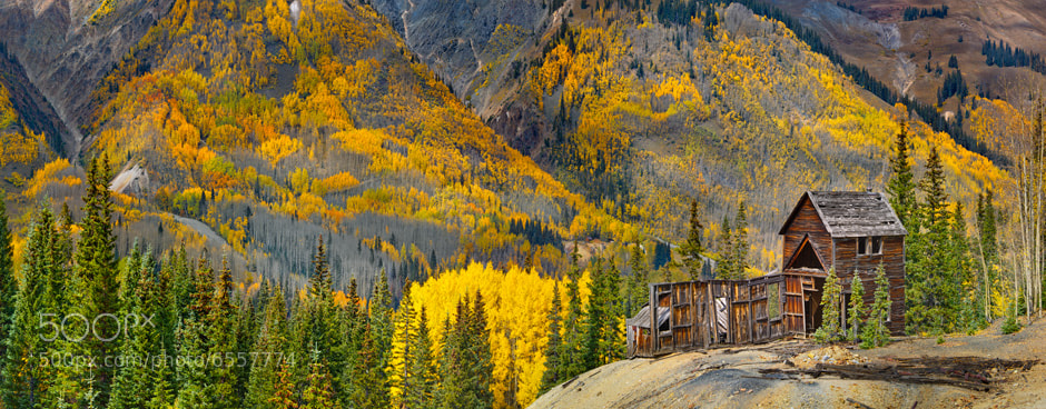 Photograph Colorado Gold by Igor Menaker on 500px