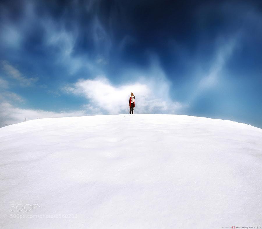 Photograph Winter Tale by gwang_Bok Bak on 500px