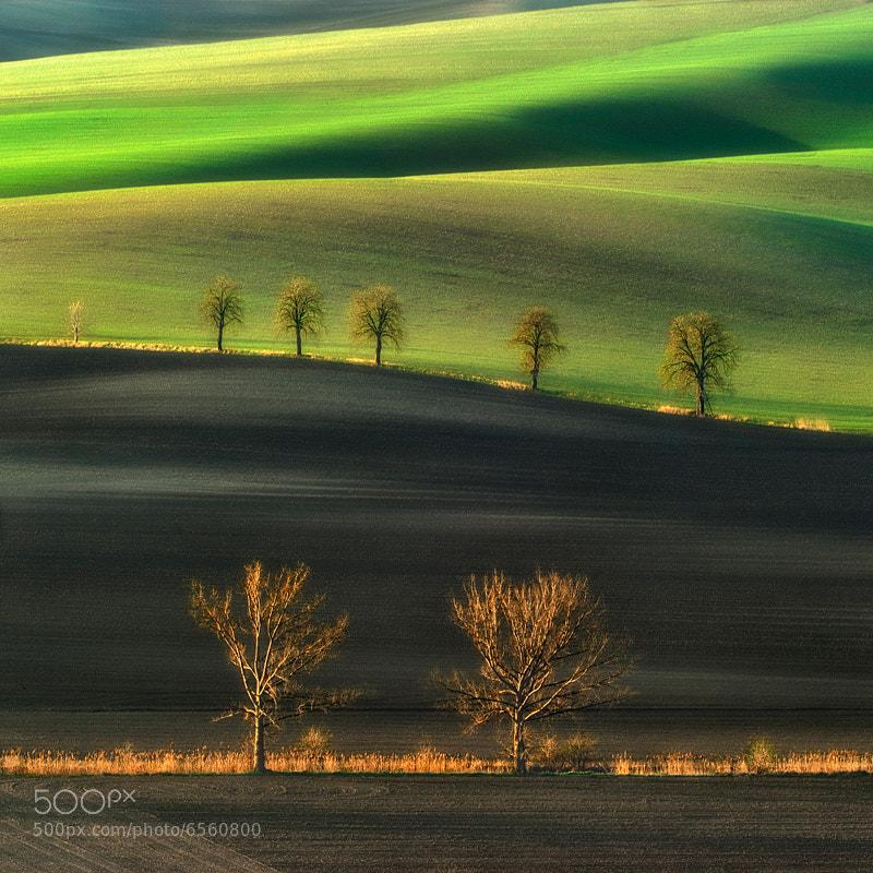Photograph Moravian fields... by Pawel Kucharski on 500px