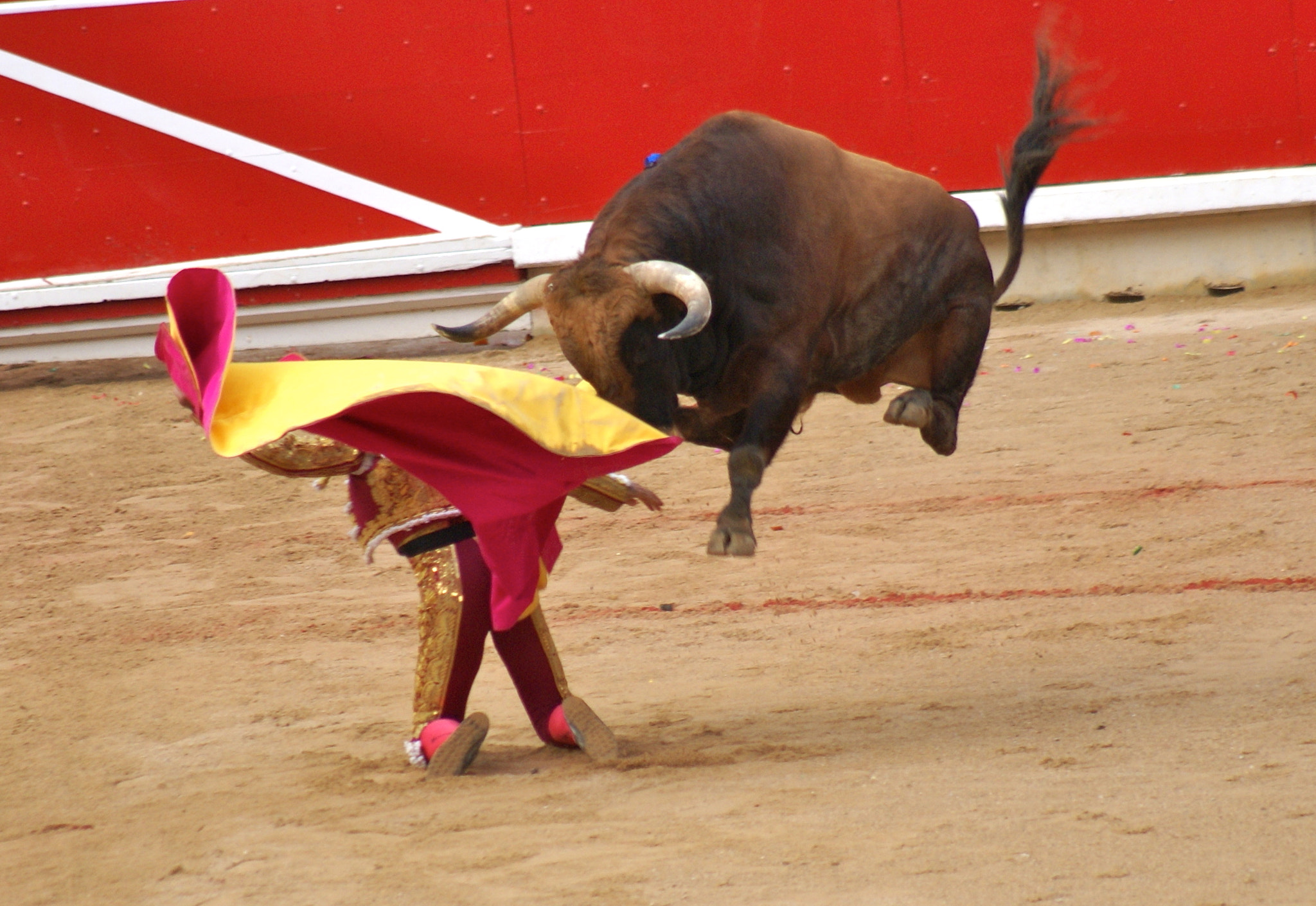 Photograph san fermines 2009 by Javier  San Martin on 500px