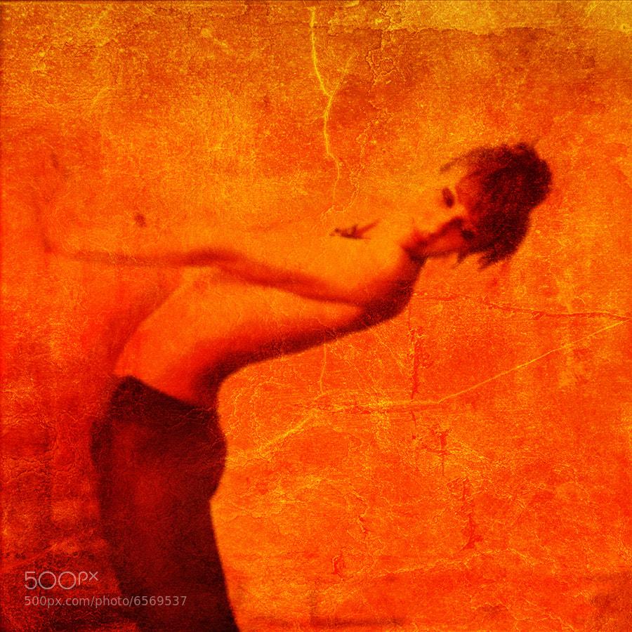 Photograph _|~ by Vladimir Lis on 500px