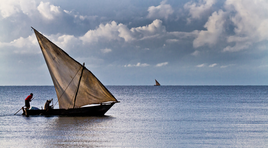 Traditional sail on the Indian ocean
