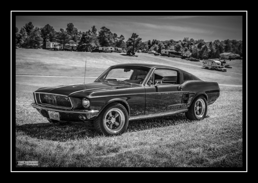 1966 Bullitt Mustang Fast Back (b/w)