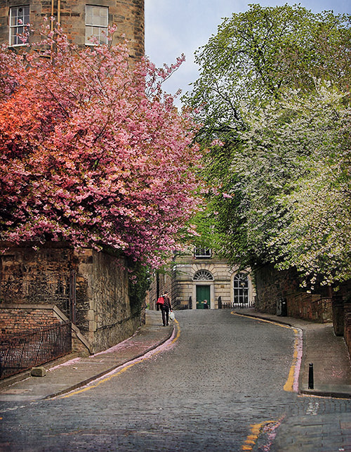 Photograph Springtime in Edinburgh by img splash on 500px