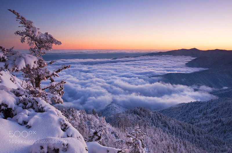 Photograph Mount LeConte Winter by Scott Hotaling on 500px