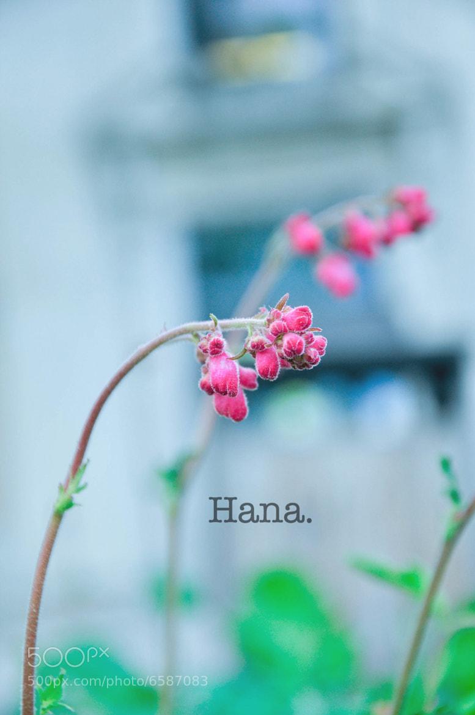Photograph Hana by Yun Hu on 500px