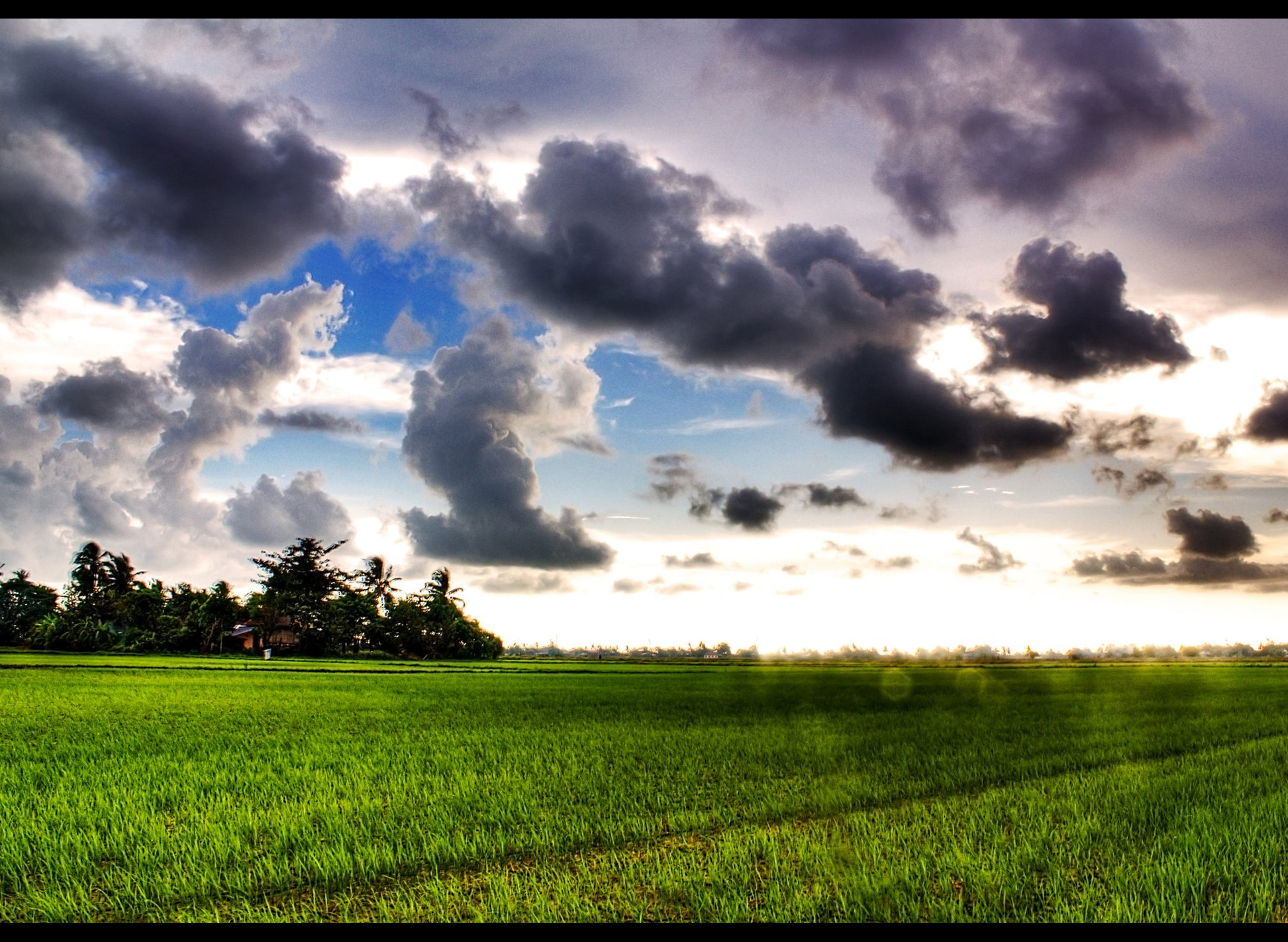Photograph Jelapang Paddy Field by Mustaqim Aris on 500px