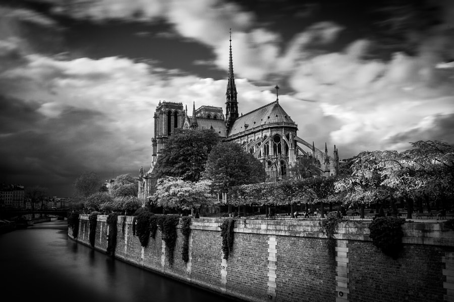 Notre Dame long exposure BW