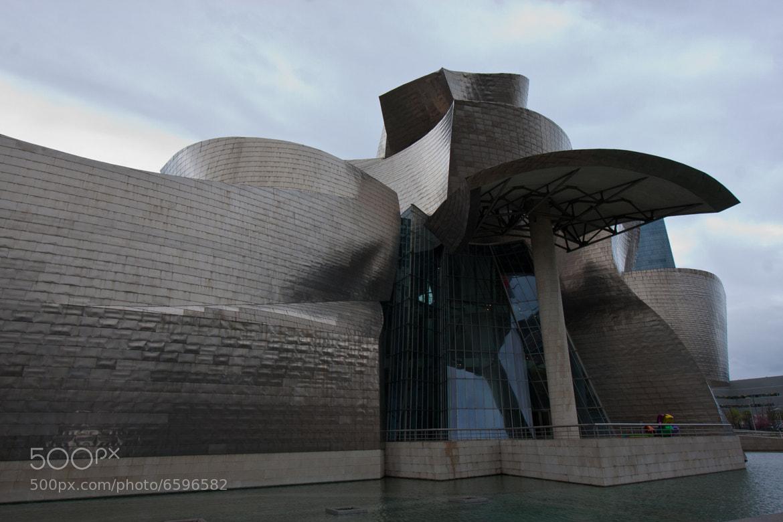 Photograph Guggenheim Museum Bilbao by philippe janssens on 500px