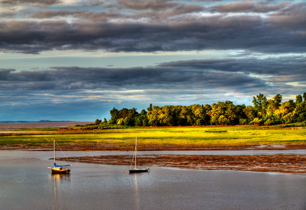 Photograph Golden hour by Johanne Dauphinais on 500px