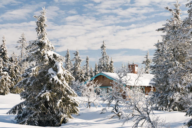 Photograph Winter in Sweden by Jonas Dandanell on 500px
